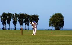 Playing Cricket - Jeanna McDonald