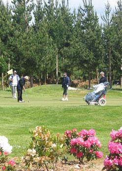 Round of Golf - Jeanna McDonald