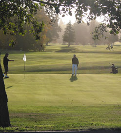 Men out on the Golf Course - Jeanna McDonald