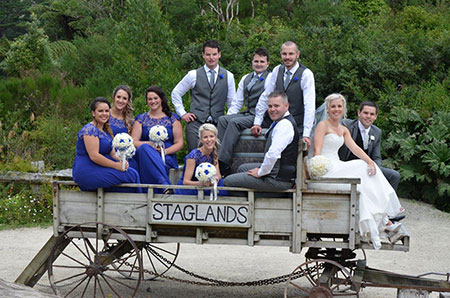 Host your Wellington wedding at Staglands Wildlife Park for a unique celebration.