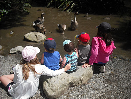 fun and educational experiences for school groups at staglands nature reserve