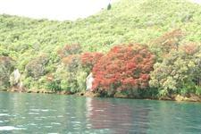 Kaiapo Bay, Lake Taupo