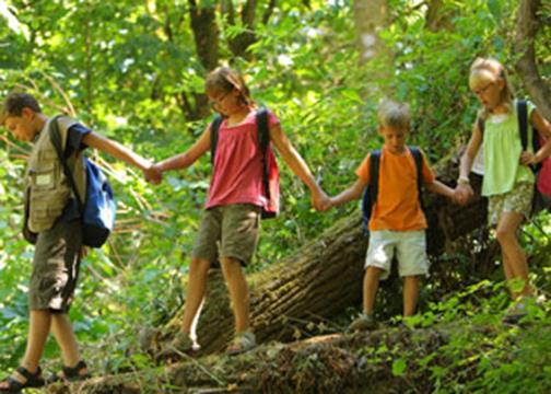 Children walking through the bush