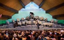 Award winning Agrodome Sheep Show
