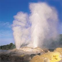Rotorua activities - geyser