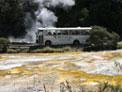 Waimangu Shuttle Bus