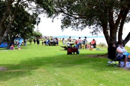 Waipu Cove reserve 1