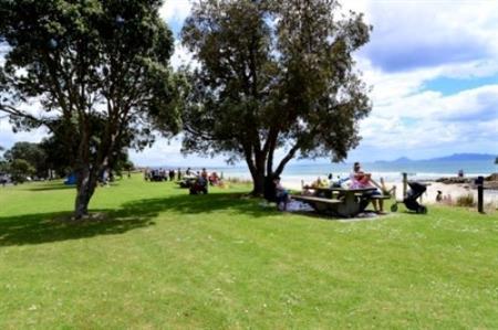 Waipu Cove reserve 2