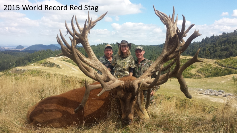 Record Stag World